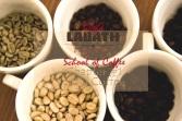 labath slow coffee